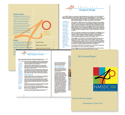 NMSDC Annual Report 2012